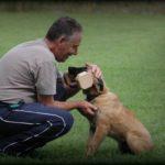 Hundetrainer Mario Becker mit Hund Mexx